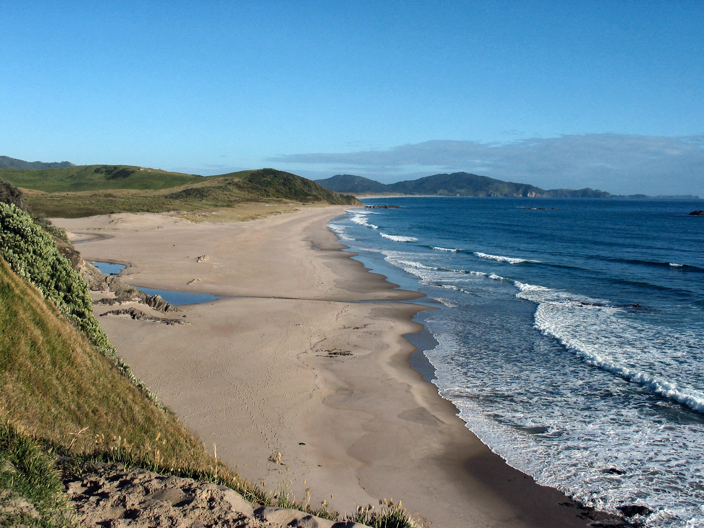Ocean Beach, Northland, New Zealand // Photo Credit: Wikimedia Commons