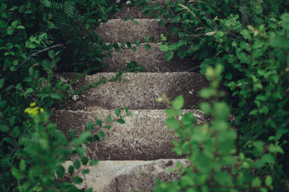 Sometimes studying can feel a lot like climbing a steep set of stairs - sometimes you want to quit and go down before you get to the top. But stay motivated - the view from above will be worth it.